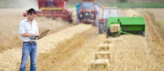 Megjelent a Fiatal gazdák induló támogatása 2015. MvM rendelete